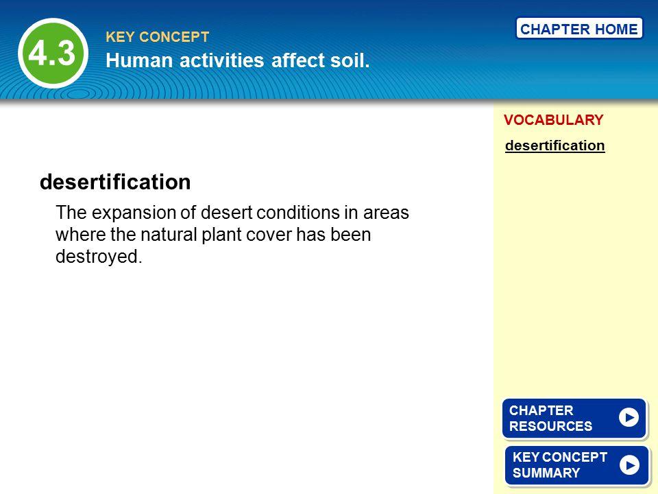 4.3 desertification Human activities affect soil.