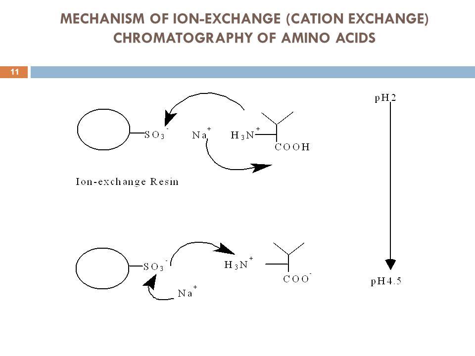 MECHANISM OF ION-EXCHANGE (CATION EXCHANGE) CHROMATOGRAPHY OF AMINO ACIDS