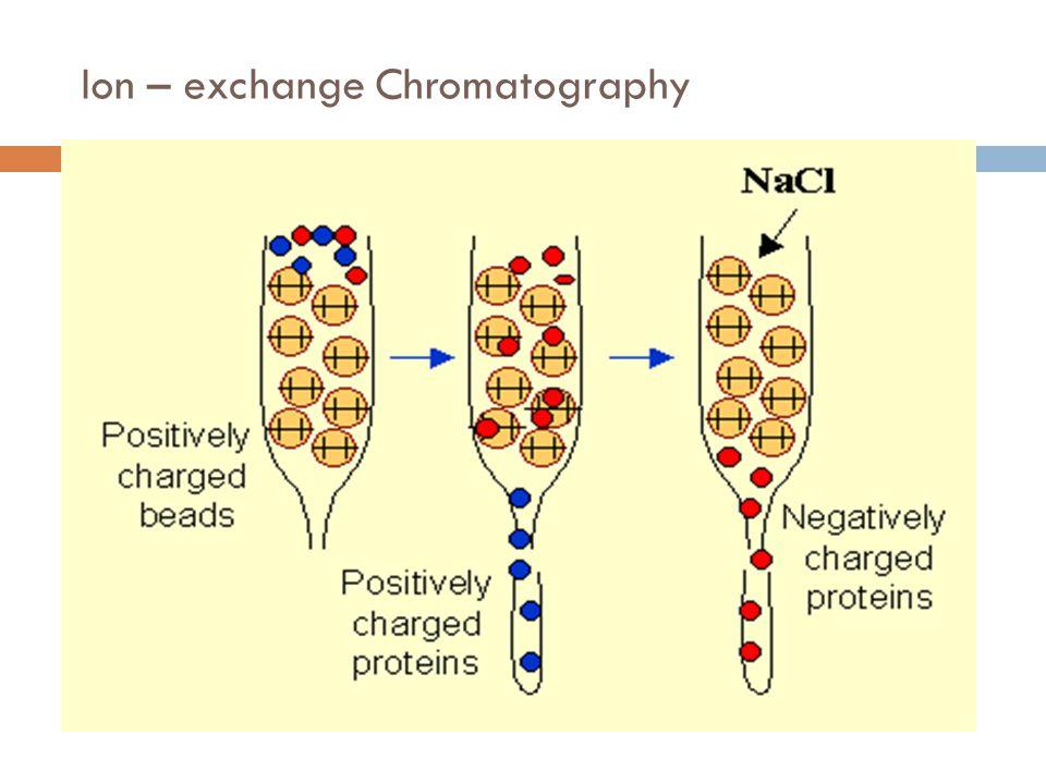 Ion – exchange Chromatography