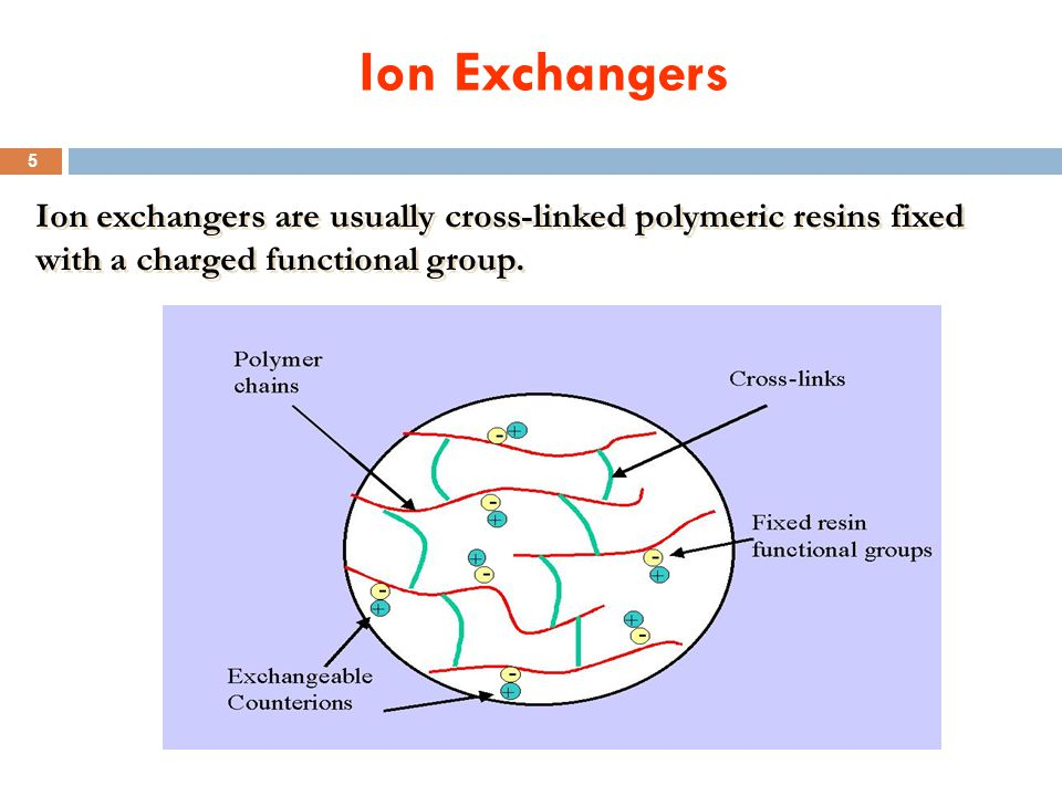 Ion Exchangers Ion exchangers are usually cross-linked polymeric resins fixed.