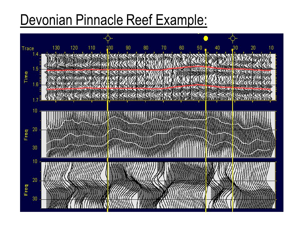 Devonian Pinnacle Reef Example: