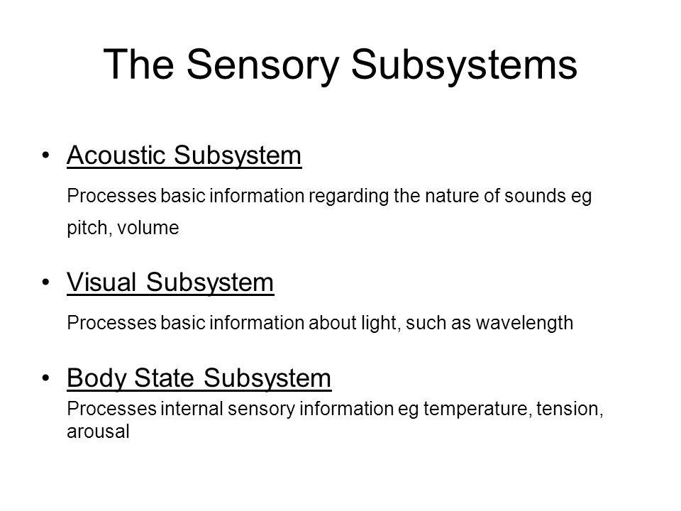 The Sensory Subsystems