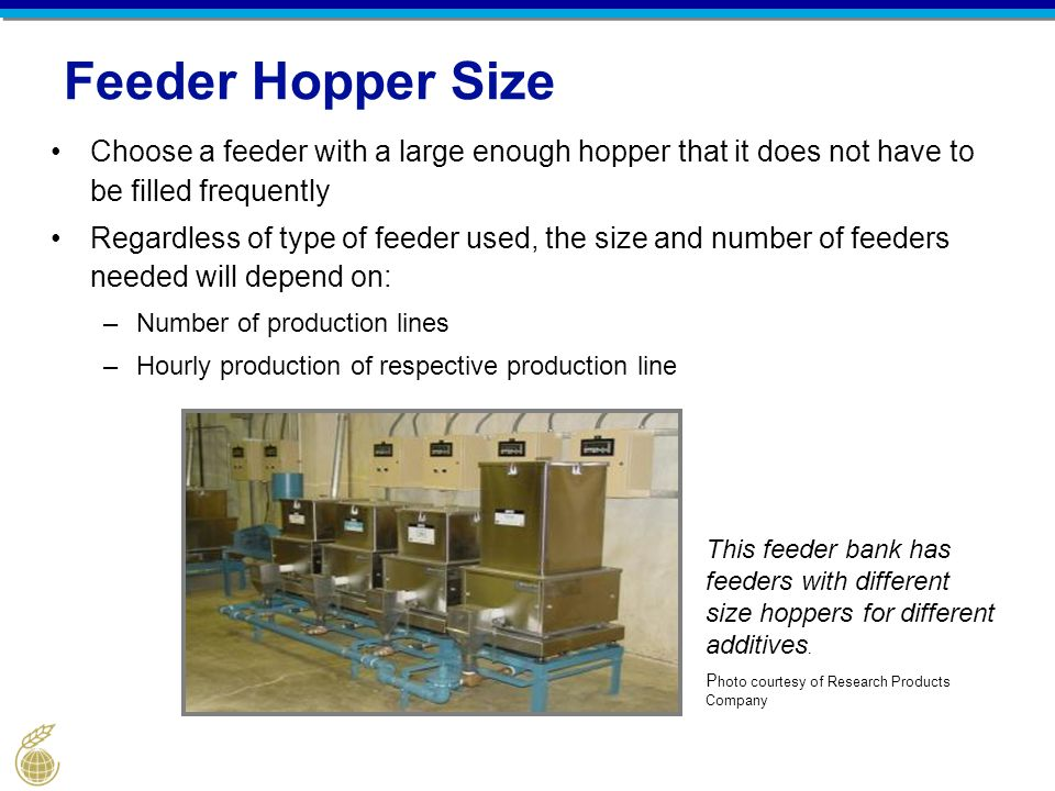 Feeder Hopper Size Choose a feeder with a large enough hopper that it does not have to be filled frequently.