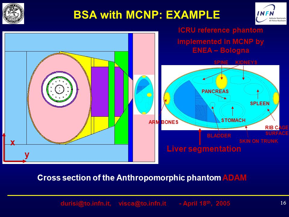 BSA with MCNP: EXAMPLE x y Liver segmentation