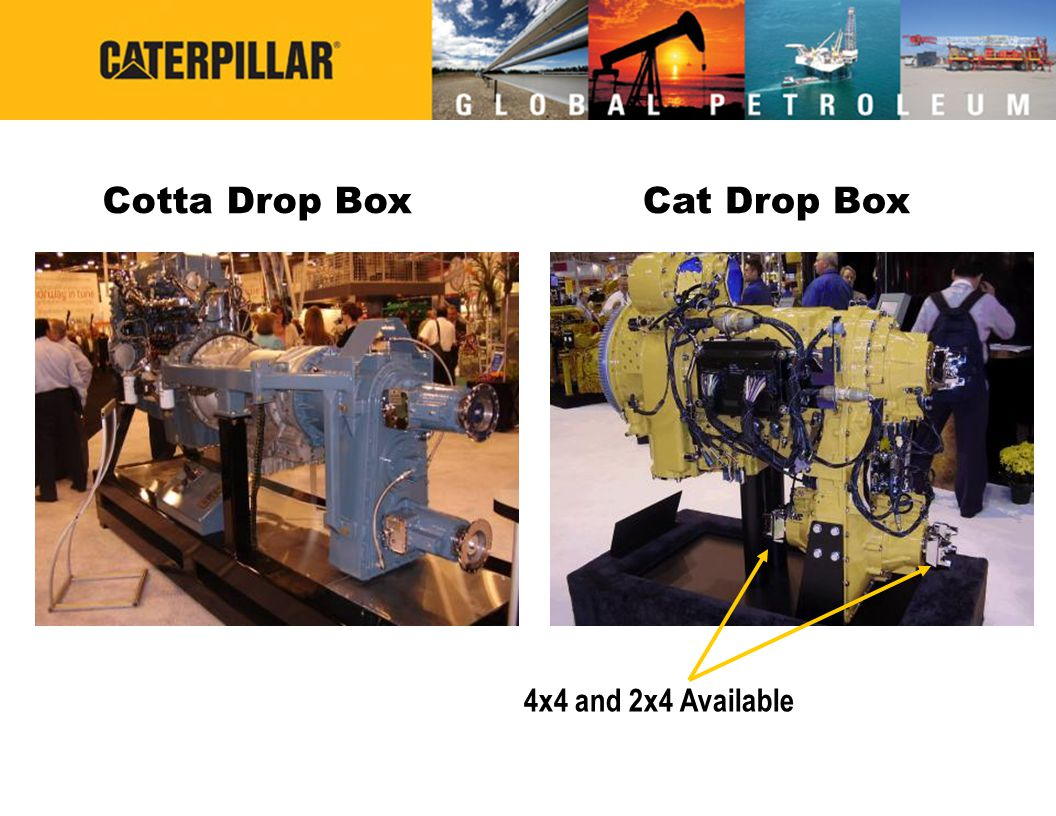 Cotta Drop Box Cat Drop Box 4x4 and 2x4 Available