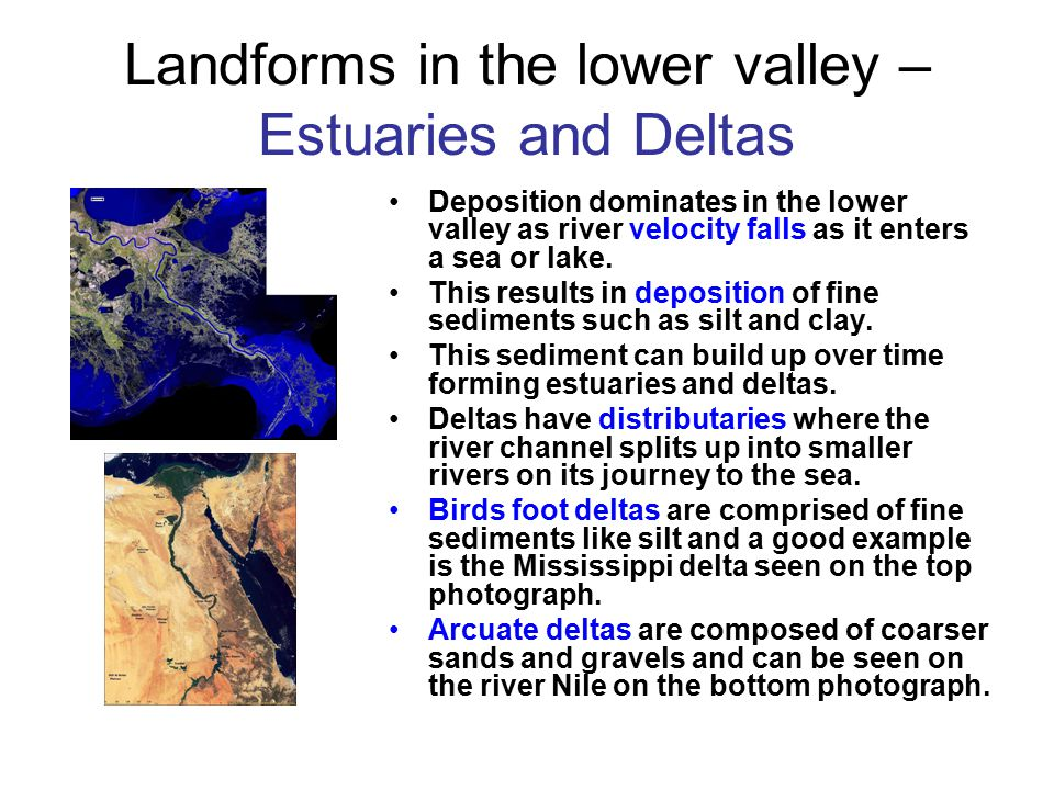 Landforms in the lower valley – Estuaries and Deltas