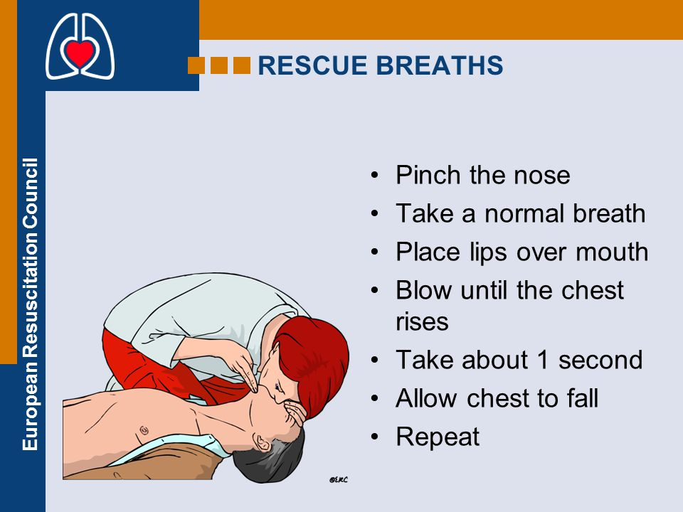 RESCUE BREATHS Pinch the nose. Take a normal breath. Place lips over mouth. Blow until the chest rises.