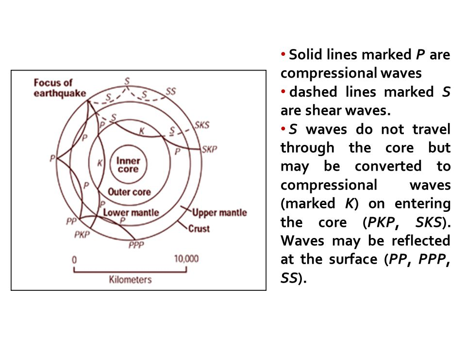 Solid lines marked P are compressional waves
