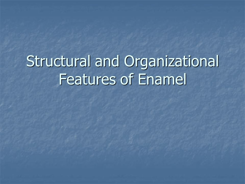 Structural and Organizational Features of Enamel
