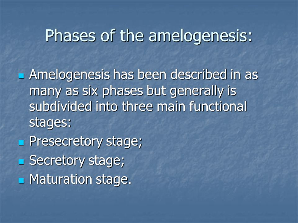 Phases of the amelogenesis:
