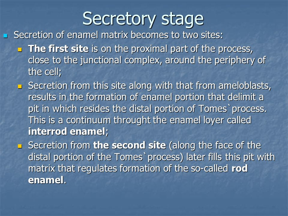 Secretory stage Secretion of enamel matrix becomes to two sites: