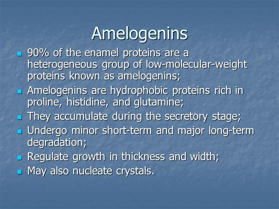 Аmelogenins 90% of the enamel proteins are a heterogeneous group of low-molecular-weight proteins known as amelogenins;