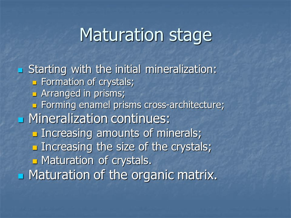 Maturation stage Mineralization continues: