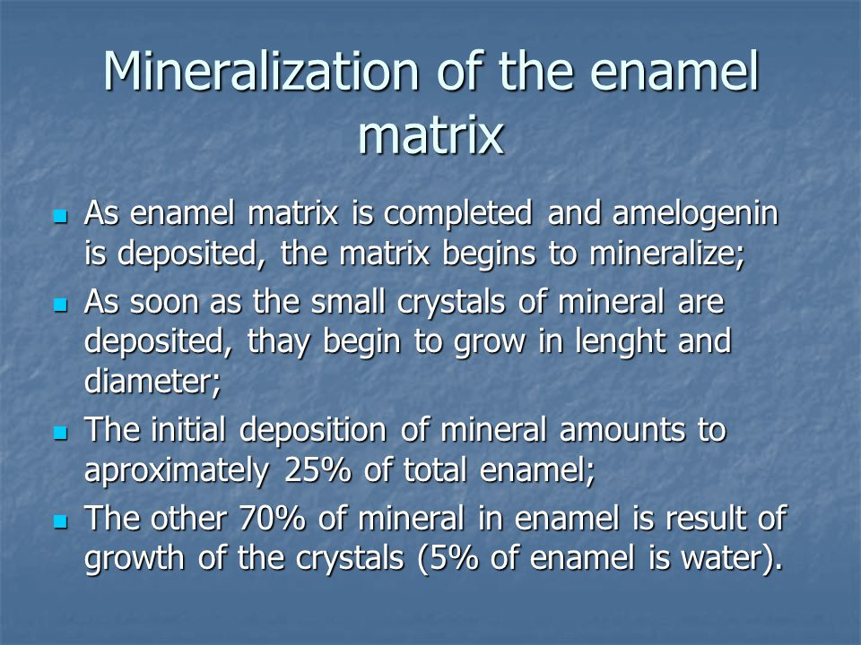Mineralization of the enamel matrix