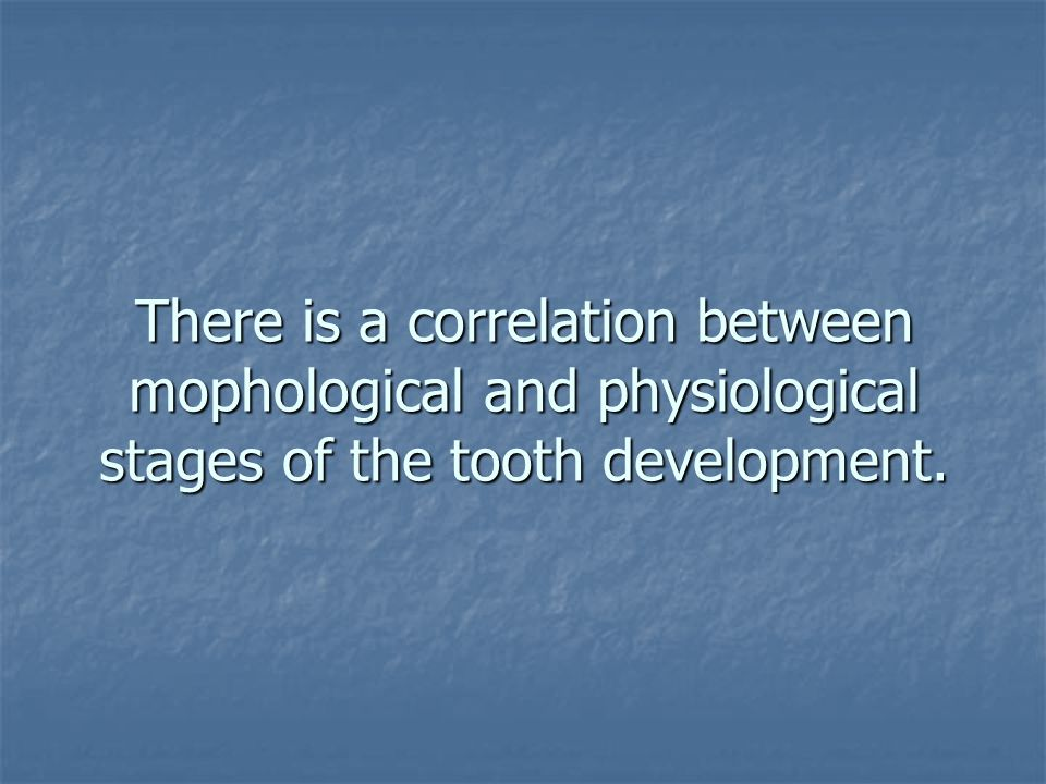 There is a correlation between mophological and physiological stages of the tooth development.