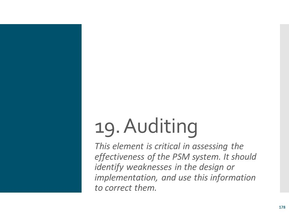 19. Auditing