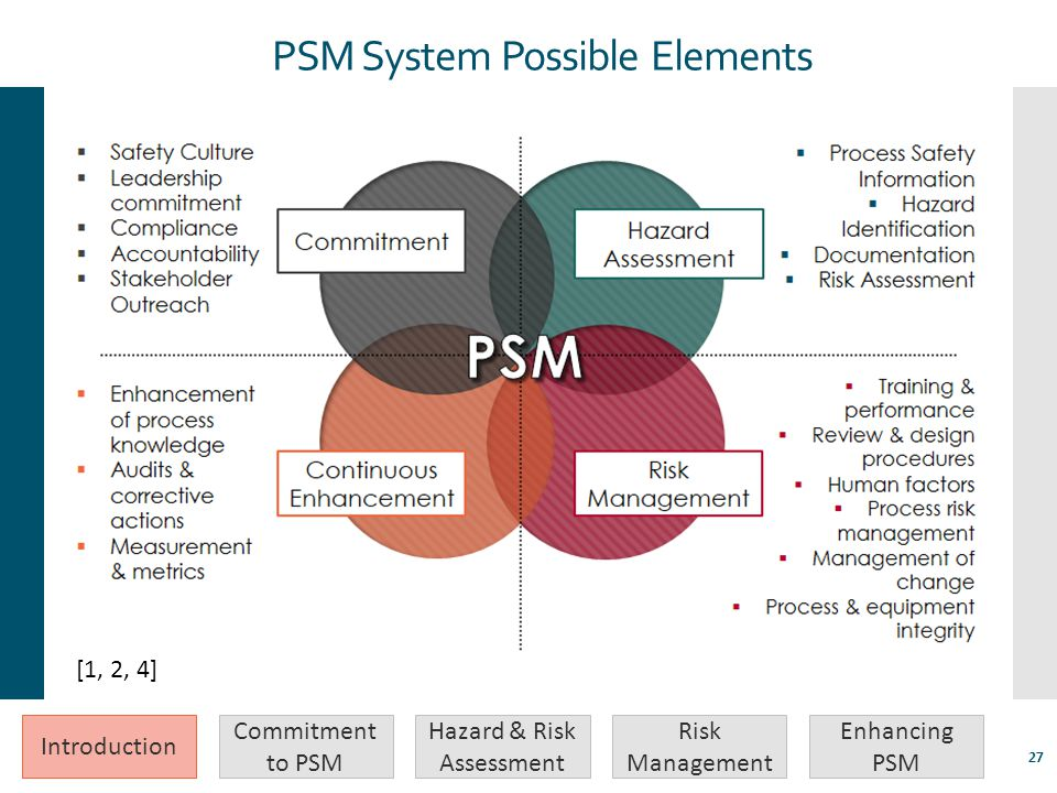 PSM System Possible Elements