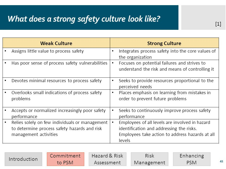 What does a strong safety culture look like
