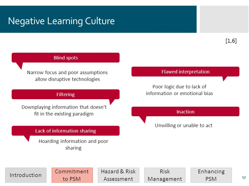 Negative Learning Culture