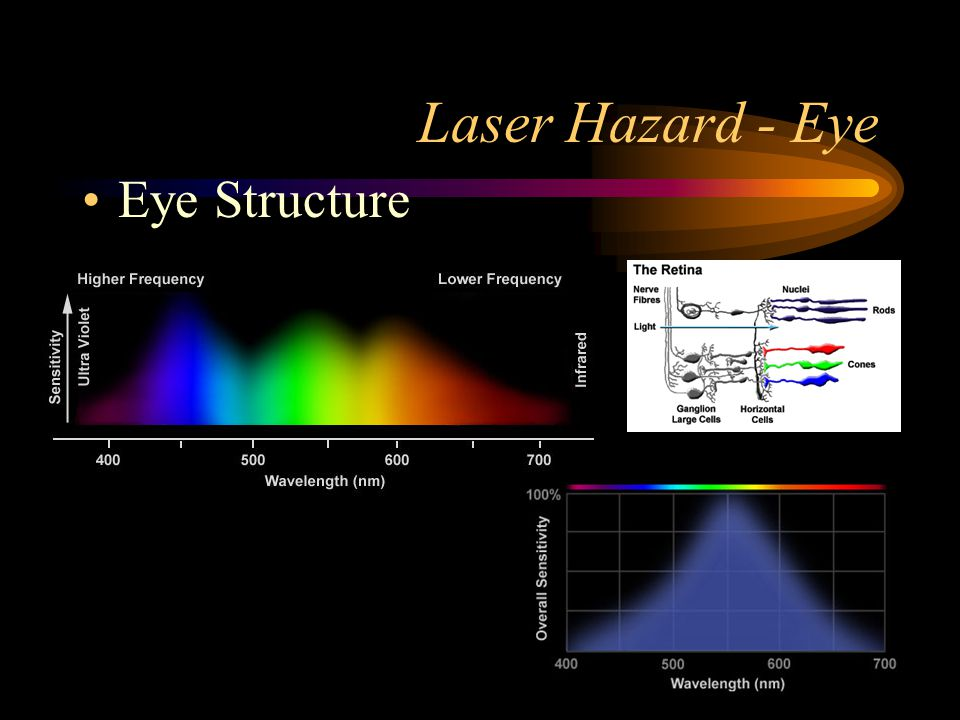 Laser Hazard - Eye Eye Structure
