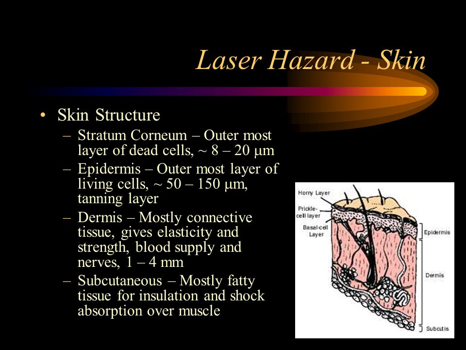 Laser Hazard - Skin Skin Structure