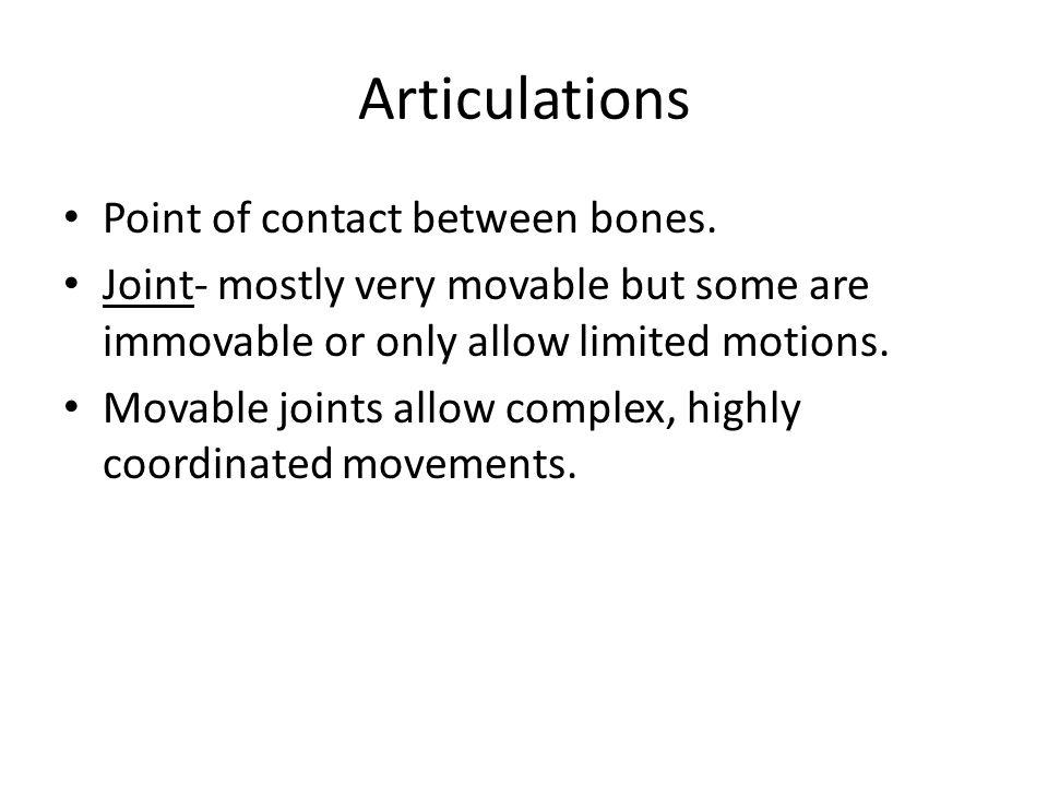 Articulations Point of contact between bones.