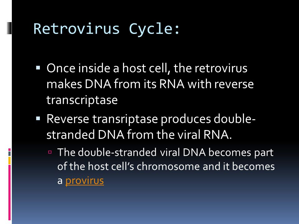 Retrovirus Cycle: Once inside a host cell, the retrovirus makes DNA from its RNA with reverse transcriptase.