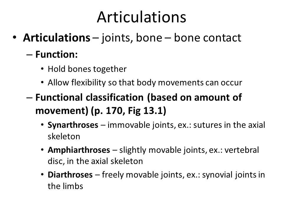 Articulations Articulations – joints, bone – bone contact Function:
