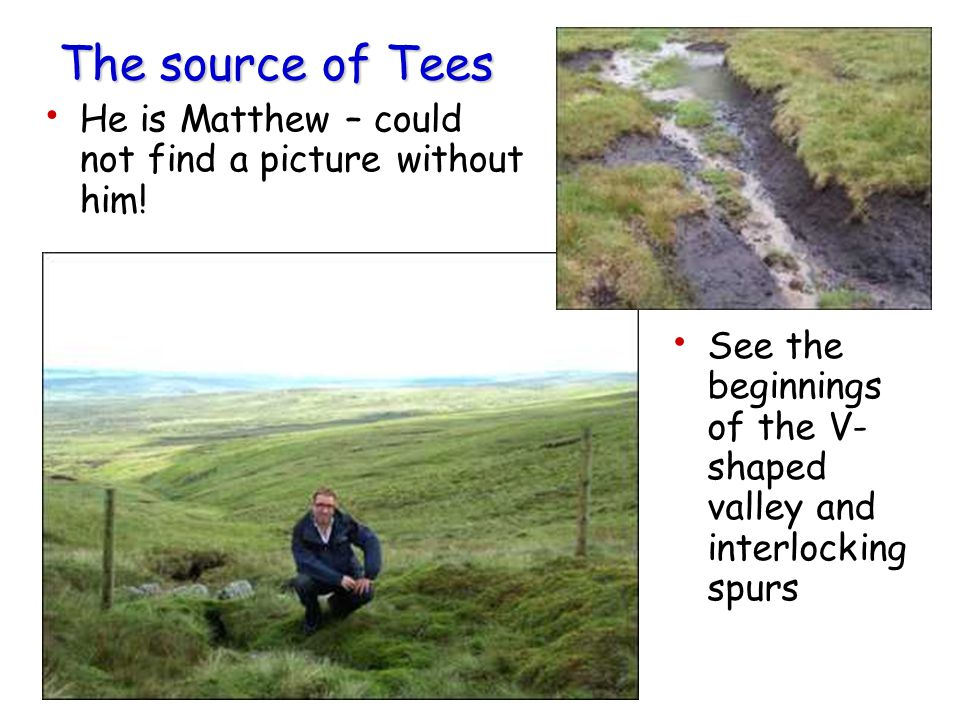The source of Tees He is Matthew – could not find a picture without him.