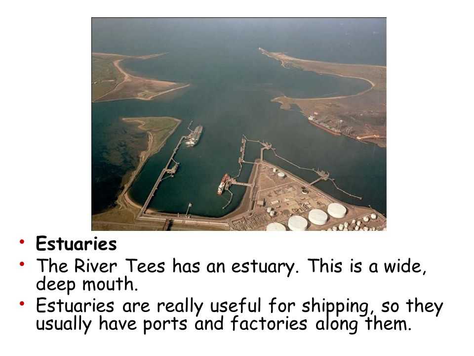 Estuaries The River Tees has an estuary. This is a wide, deep mouth.