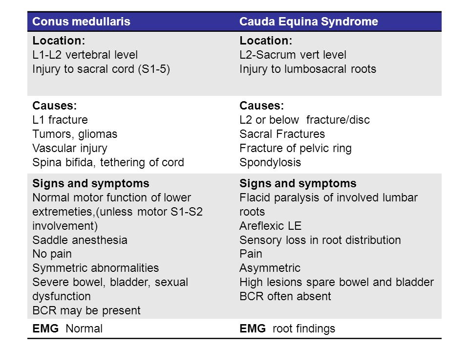 Conus medullaris Cauda Equina Syndrome. Location: L1-L2 vertebral level. Injury to sacral cord (S1-5)