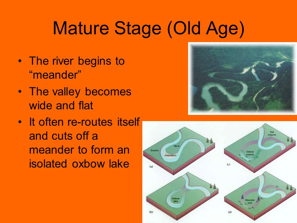 Mature Stage (Old Age) The river begins to meander