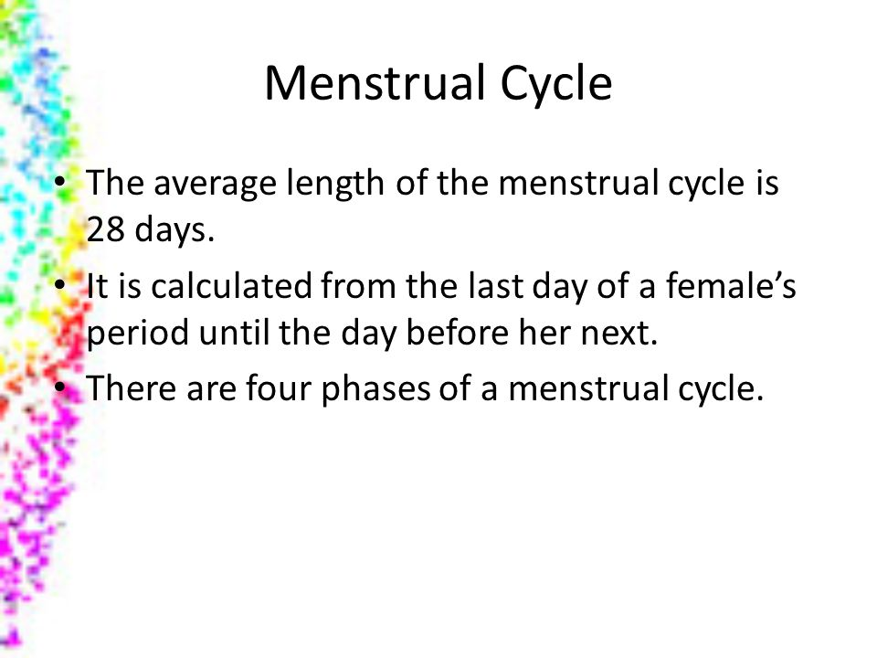 Menstrual Cycle The average length of the menstrual cycle is 28 days.