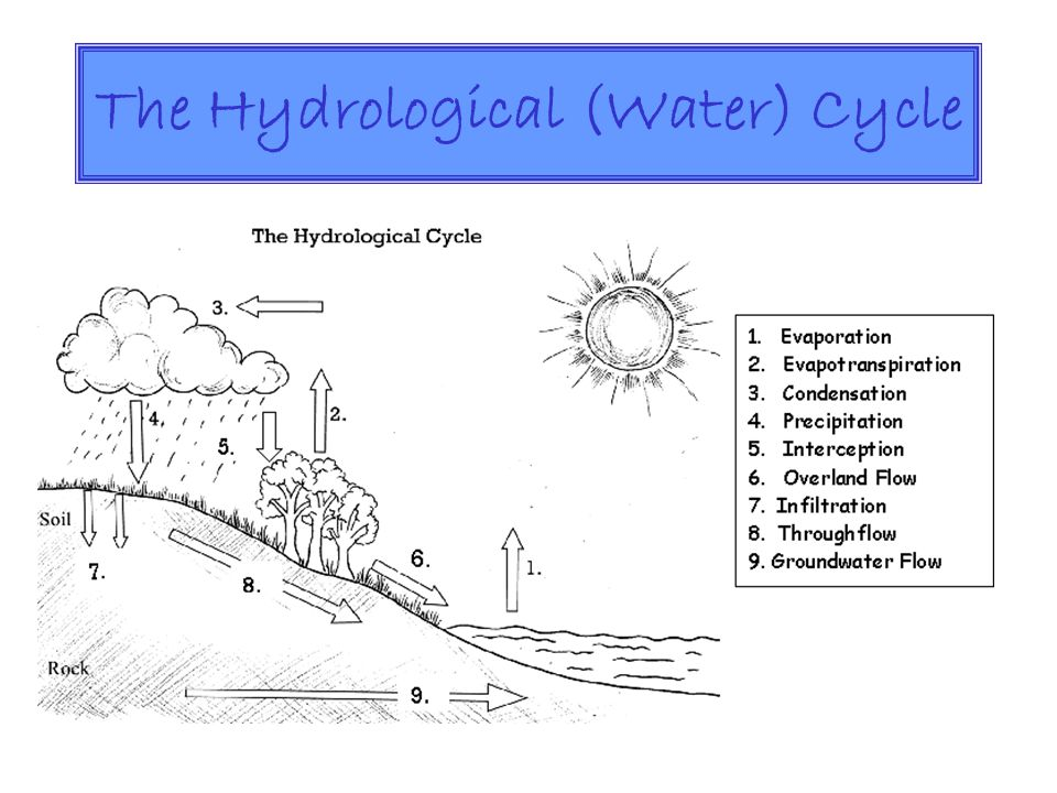 The Hydrological (Water) Cycle
