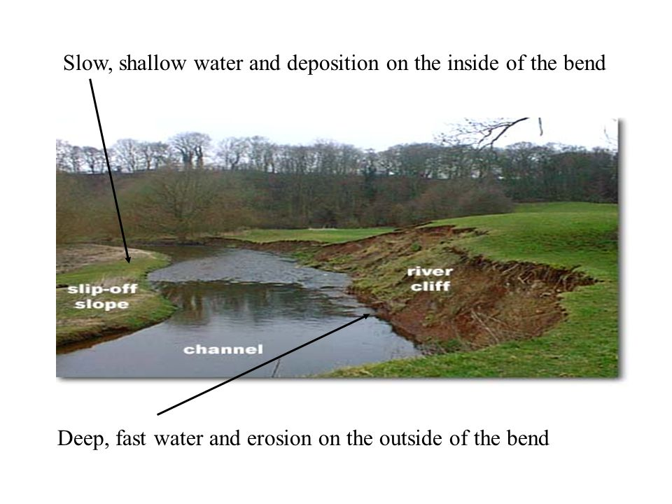 Slow, shallow water and deposition on the inside of the bend