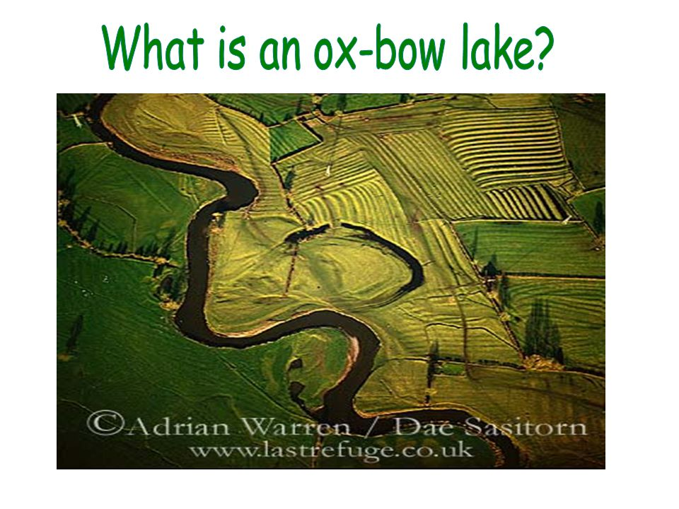 What is an ox-bow lake