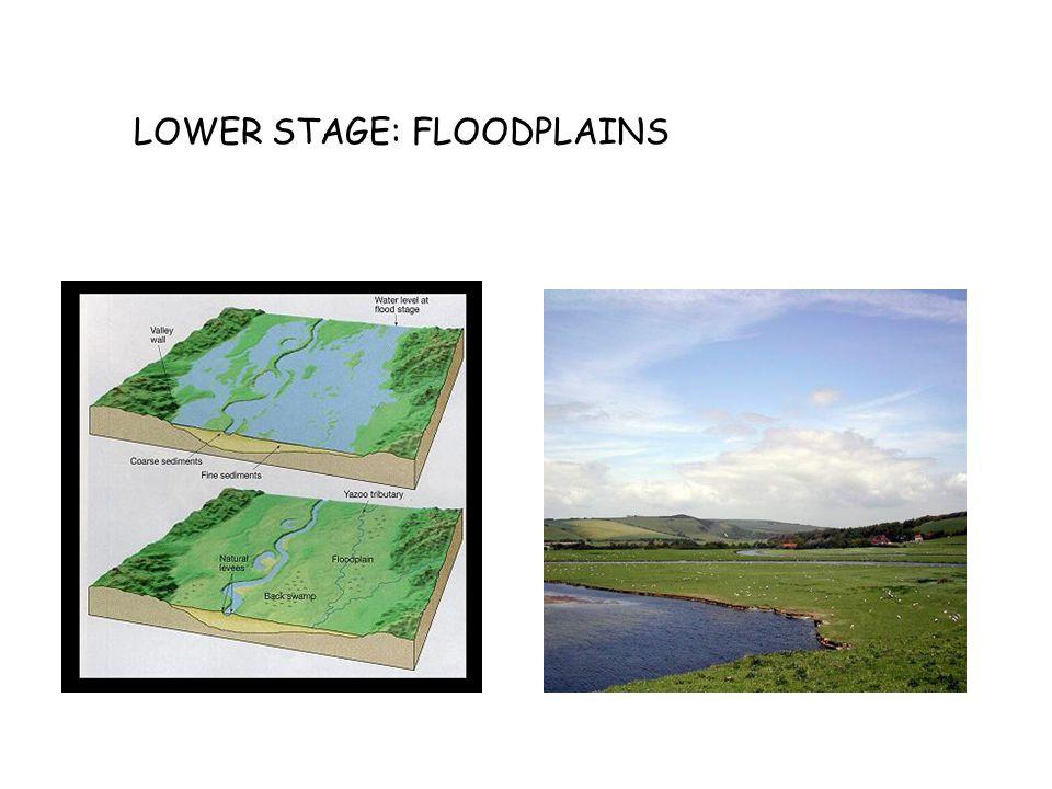 LOWER STAGE: FLOODPLAINS