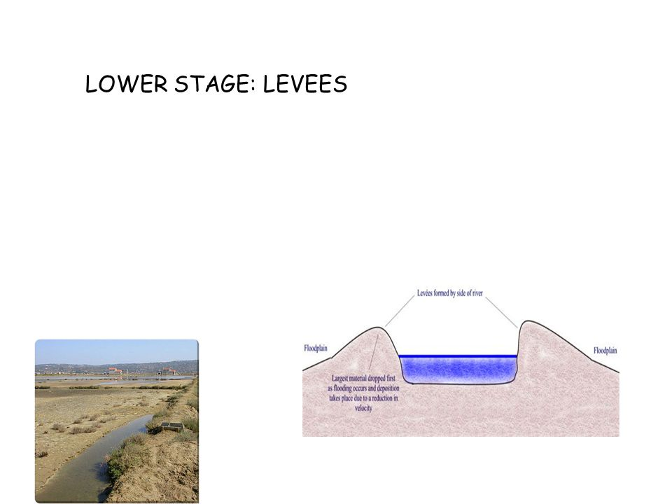 LOWER STAGE: LEVEES