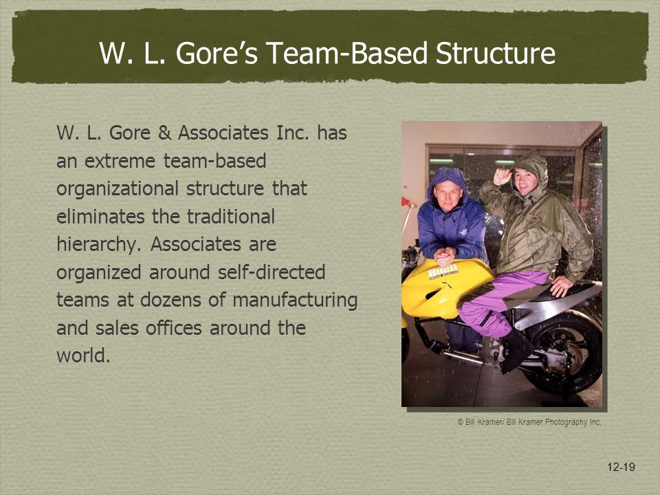 W. L. Gore's Team-Based Structure