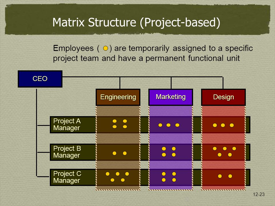 Matrix Structure (Project-based)
