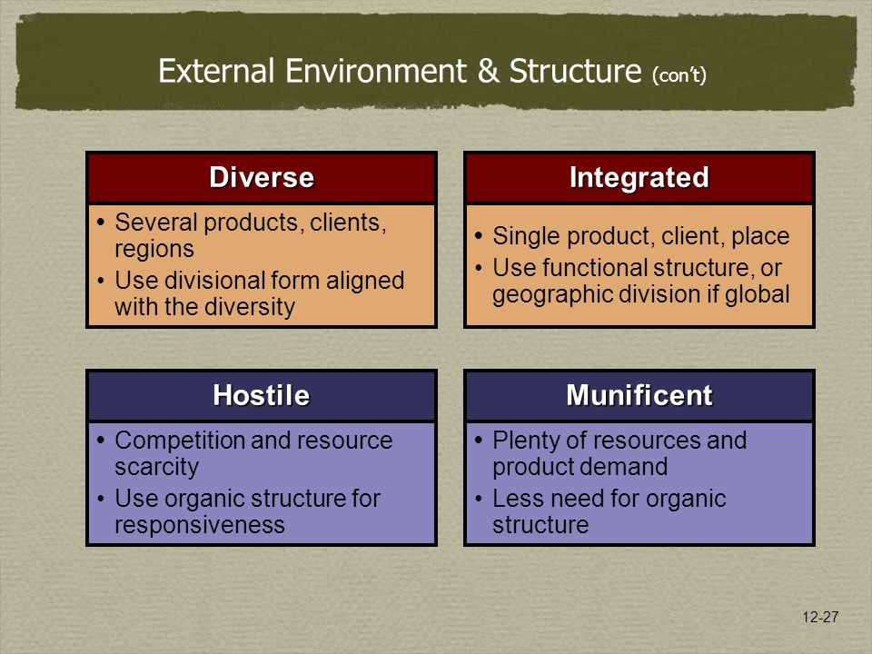 External Environment & Structure (con't)