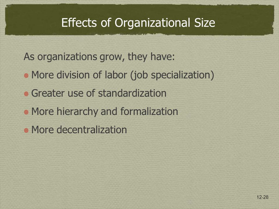 Effects of Organizational Size
