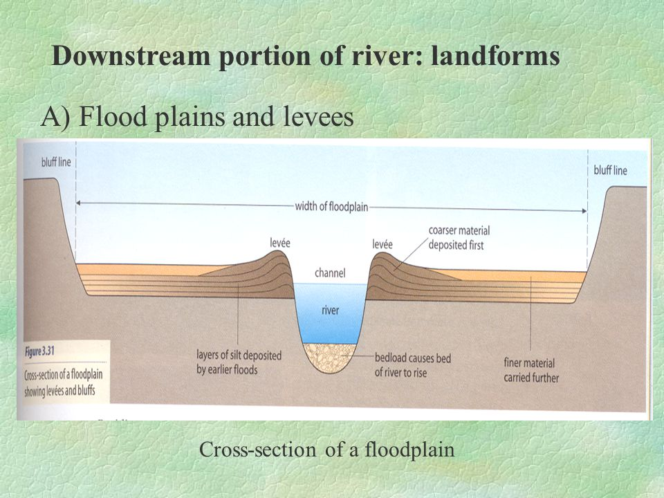 Cross-section of a floodplain