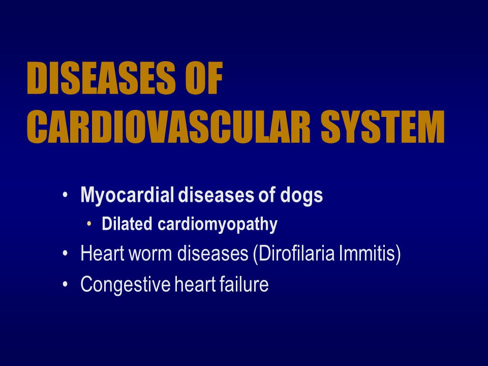 DISEASES OF CARDIOVASCULAR SYSTEM