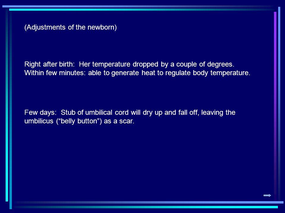 (Adjustments of the newborn)