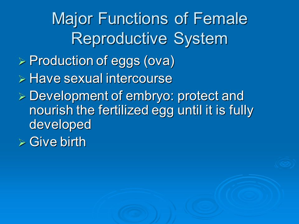 Major Functions of Female Reproductive System
