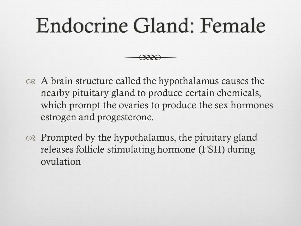 Endocrine Gland: Female