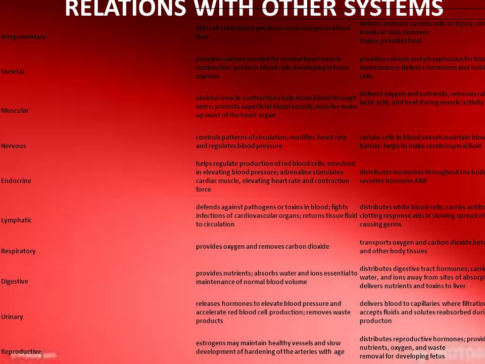 RELATIONS WITH OTHER SYSTEMS