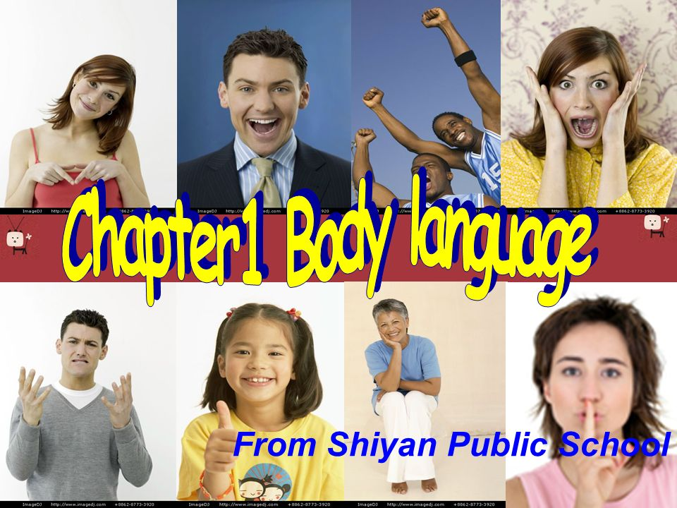 Chapter1 Body language From Shiyan Public School