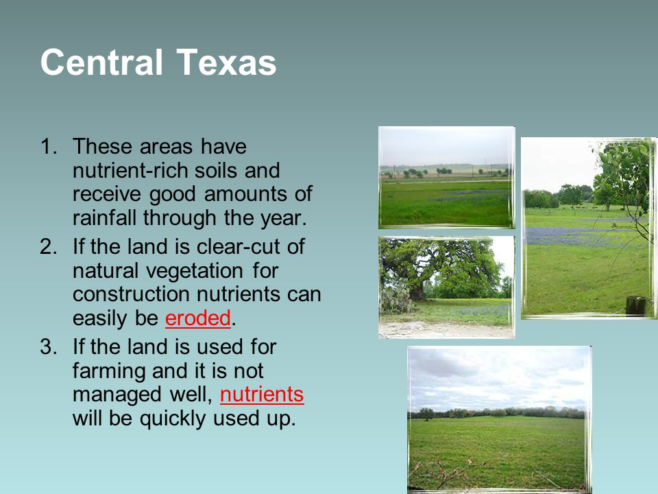 Central Texas These areas have nutrient-rich soils and receive good amounts of rainfall through the year.